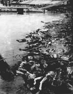 南京大虐殺 論点と検証